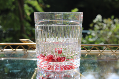 Gin Old Fashioned Tumblers
